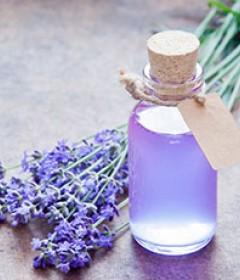 Air Freshener & Odor Removers